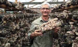 man holding medicinal mushrooms